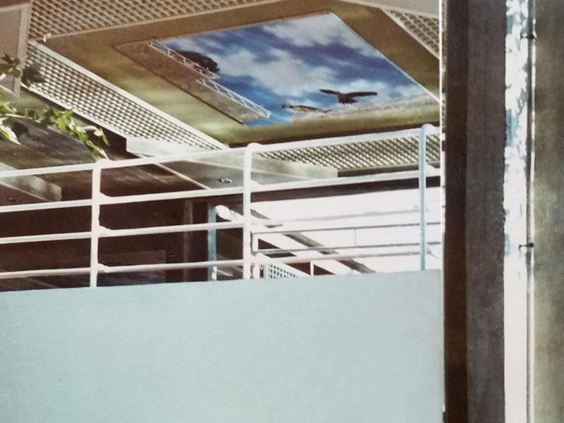 Soffitti con trompe l'oeil con pappagalli per albergo Calabria Italia